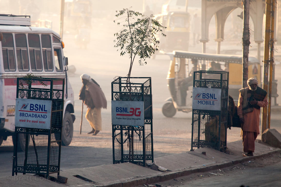 Early morning on the streets of Jodhpur, Rajasthan, India