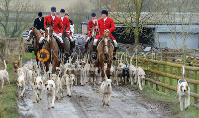 The Quorn and Cottesmore Hunts at the Quorn Kennels 11/2
