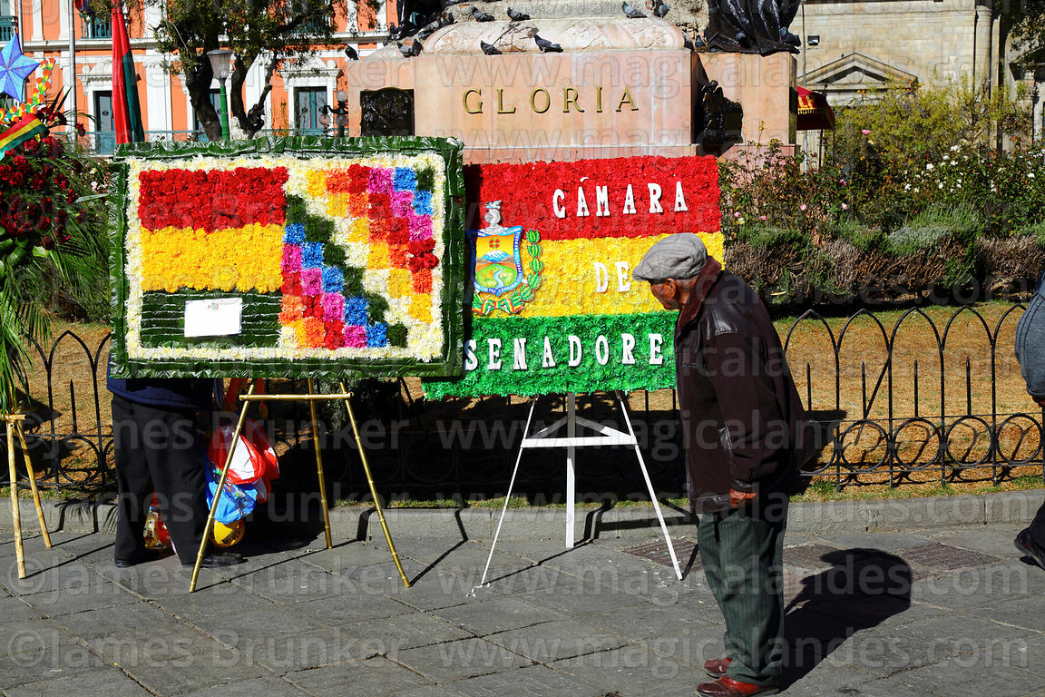 Old man looking at floral tributes for 16th July uprising anniversary celebrations, Plaza Murillo, La Paz, Bolivia