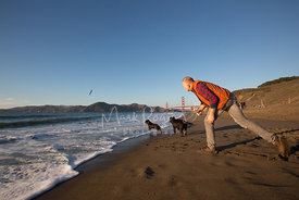 Red-haired Man Throwing Stick for Two Dogs at Beach