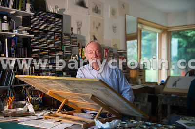 13th November, 2014.Artist Martin Gale photographed at his studio outside Ballymore-Eustavce, County Kildare.Photo:Barry Cron...