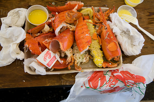 Two devoured lobsters at Rockland, Maine Lobster Festival