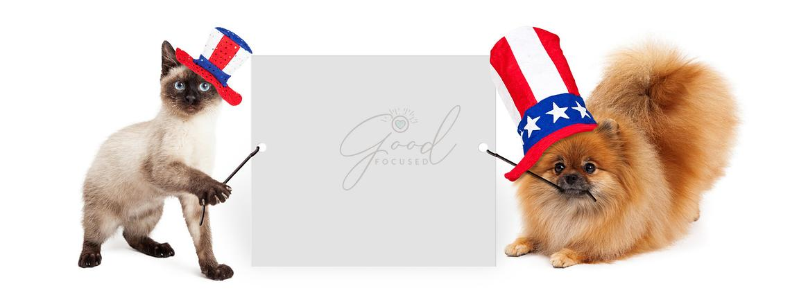 Independence Day Dog and Cat Holding Up Banner