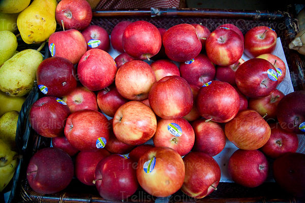 Red apples for sale at the farmer's market