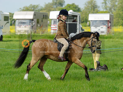 Class 17 - BSPS Heritage M&M Pretty Polly (RIHS) First Ridden