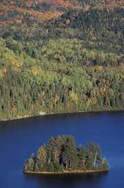 Aerial view of island in lake and mixed woodland, Quebec, Canada