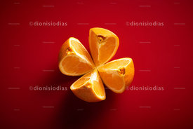 Sliced Orange in four pieces view from top and red background