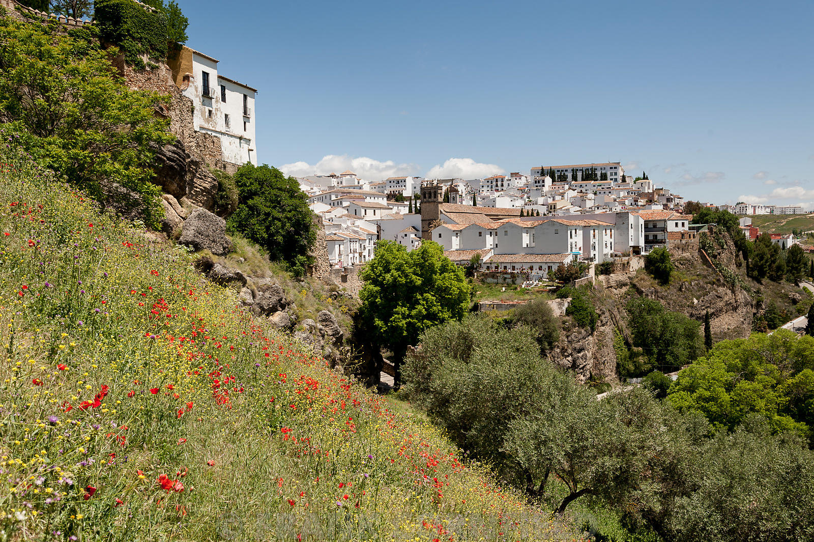 View of Ronda in Spain