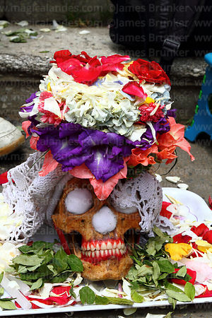 Skull with dentures and coca leaf offerings, Ñatitas festival, La Paz, Bolivia