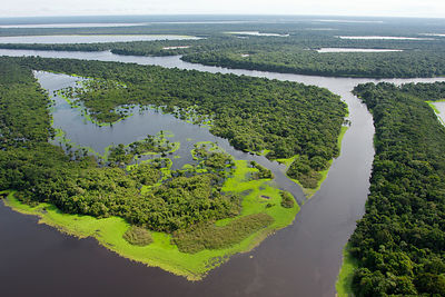 Aerial view of flooded forests, Anavilhanas Archipelago, Anavilhanas National Park, in the Rio Negro, Amazonas, Brazil Februa...