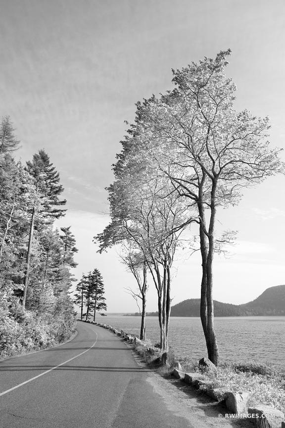 SARGEANT DRIVE AND SOMES SOUND ACADIA NATIONAL PARK MAINE BLACK AND WHITE
