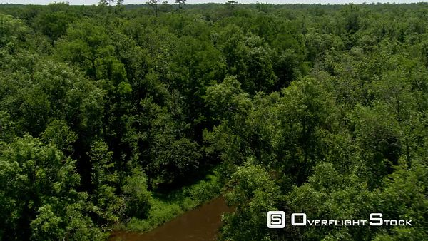 Flight above a winding brown river in a forested Alabama swamp