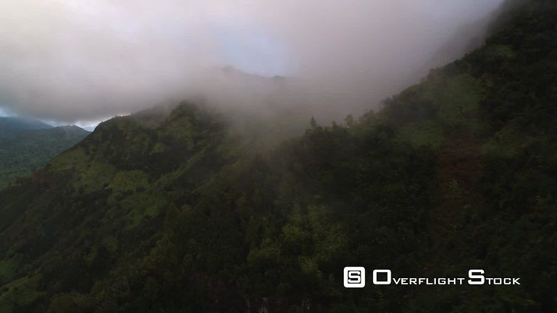Over misty green hills to a wide view of Mamalahoa Forest, Oahu