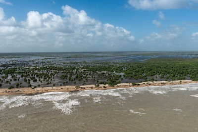 Aerial view of Shell beach, North Guyana, South America