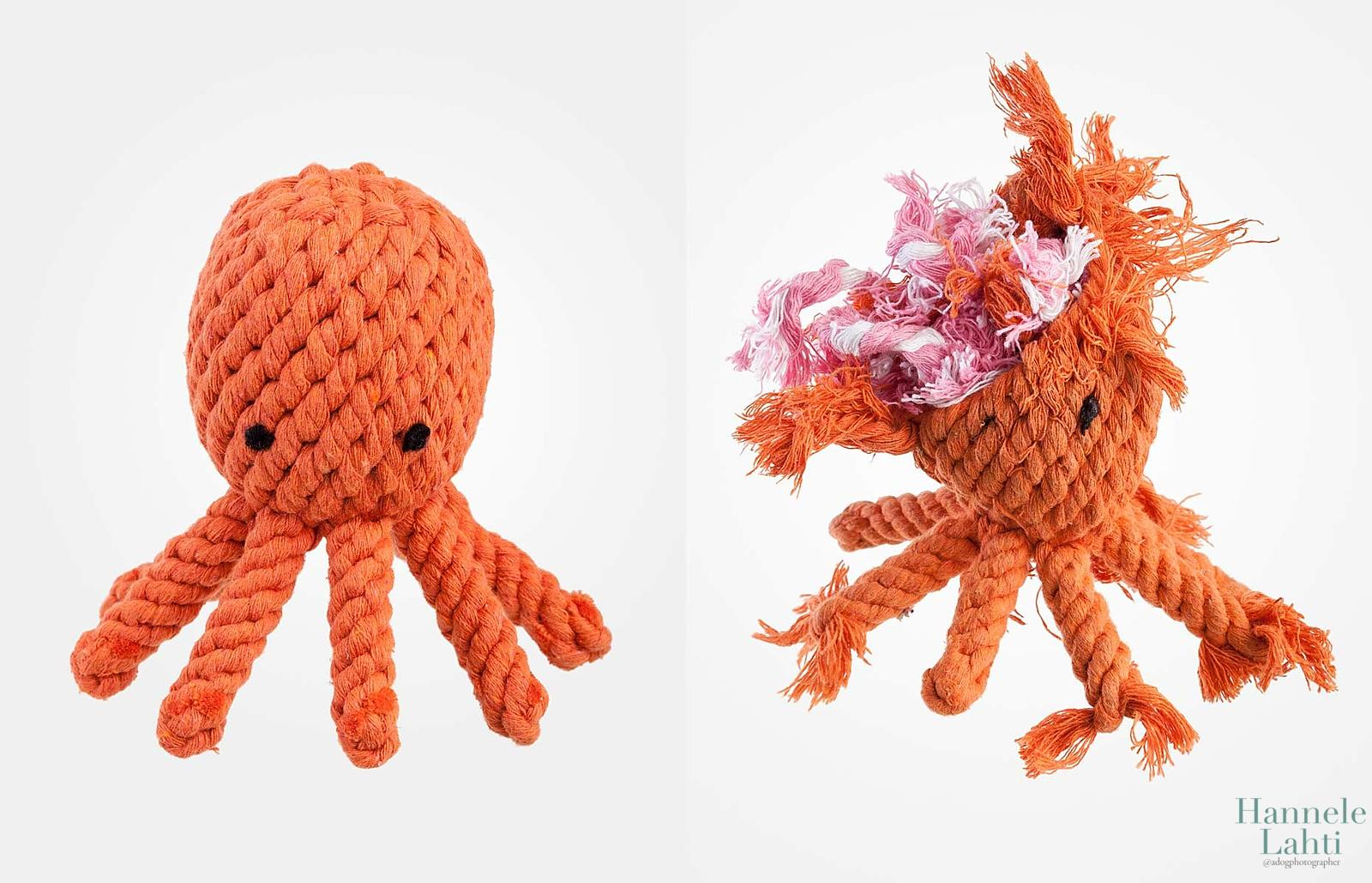 RopeOctopus_Diptych