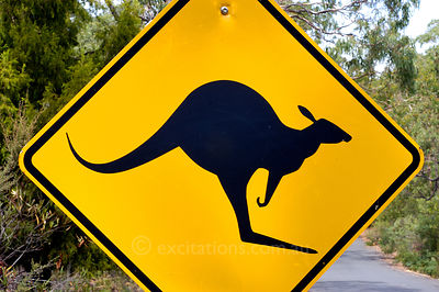Kangaroo warning sign beside road, Australia.