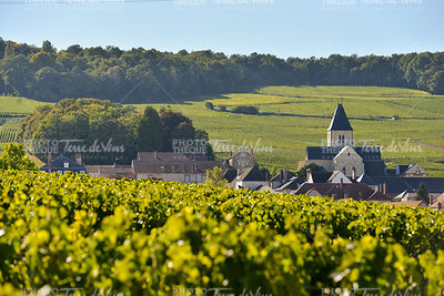 Champagne vineyards and church in Marne department, France