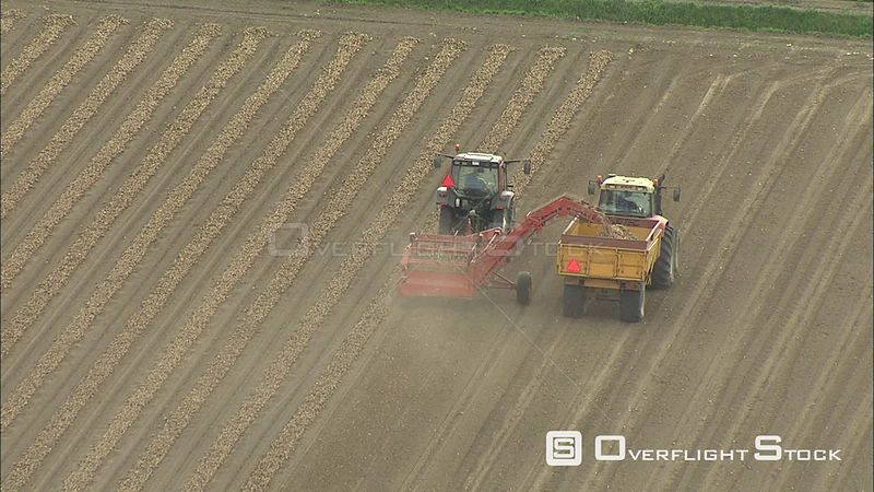 Farm machinery picking up a crop in a harvested field, The Netherlands