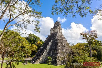 Temple I of the Jaguar, mayan ruins of Tikal, Guatemala