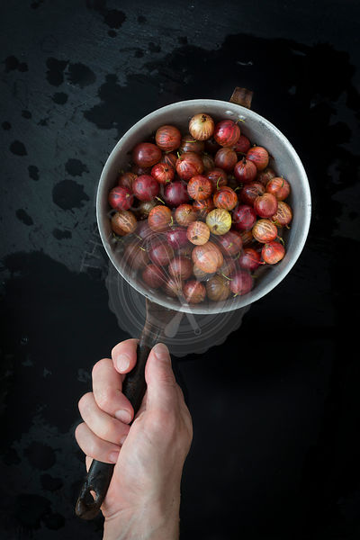 Hand holding vintage colander with gooseberries over wet slate background. Top view