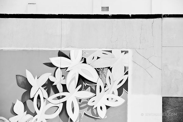 MURAL AUSTIN TEXAS BLACK AND WHITE