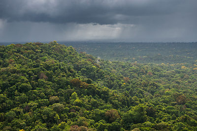 Rain storm over rainforest, Essequibo river region 9, Iwokrama, Rupununi, Guyana, South America
