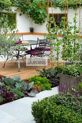 Allotment, Contemporary garden, Garden chair, garden designer, Garden furniture, Garden table, mangetout, Mini potager, Mini Vegetable garden, Parsley, Salad, Small garden, Tropaeolum majus, Urban garden, Vegetable patch, Vegetable plot, Wooden Terrace, Ir