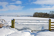 Snow on fields towards Cherhill, Wiltshire