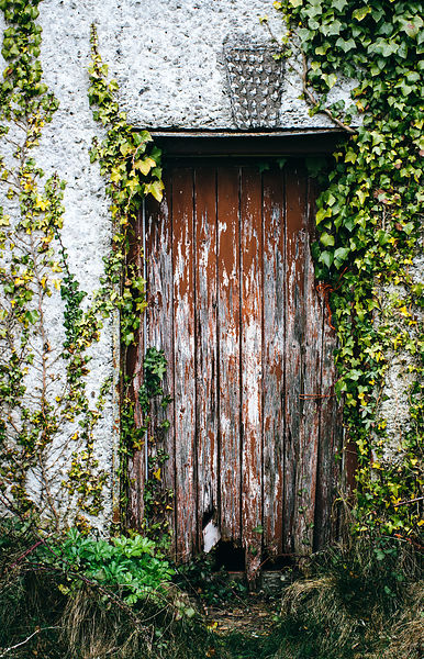 Front_Door_Co._Louth
