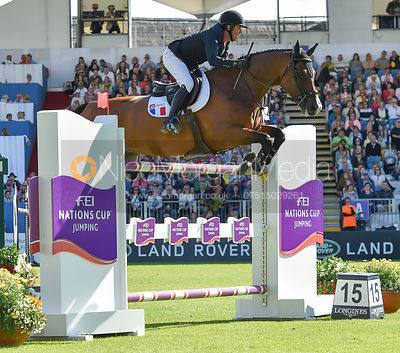 Marc Dilasser and Cliffton Belesbat  - FEI Nations Cup, Dublin Horse Show 2017