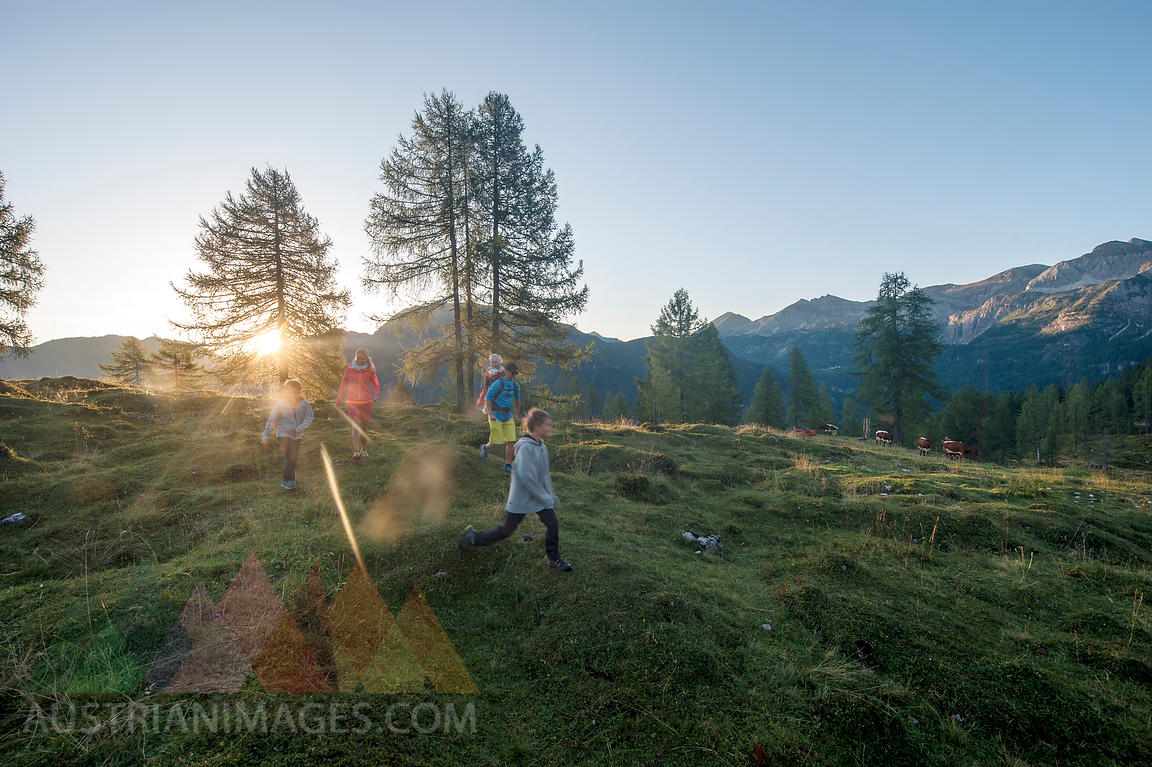 Family hiking in alpine meadow at sunset