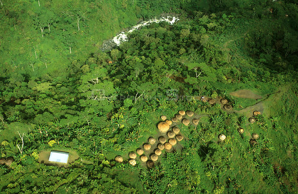 Aerial view of a Yali village huts, West Papua, former Irian-Jaya, Indonesia, August 2002