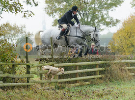 Dick Wise jumping a hedge near Wilson's - The Cottesmore at Langham.
