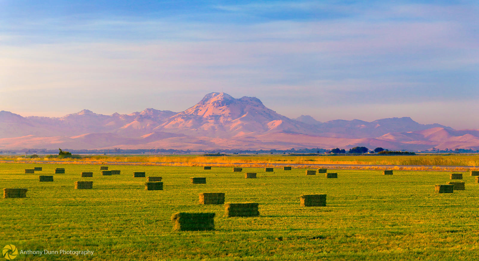 Baled hay under the Sutter Buttes