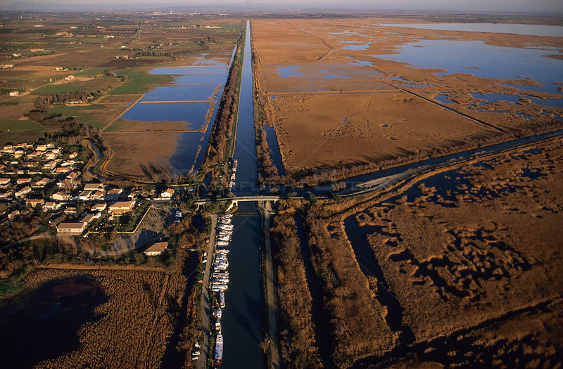 Gallician village and canal through marshland, Gallician marshes, Camargue, France.