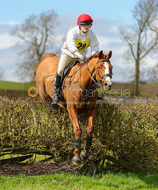 Lucy Walker jumping the last hedge - Harborough Ride 2014