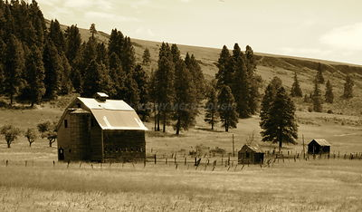 Barn and Buildings near Wenatchee