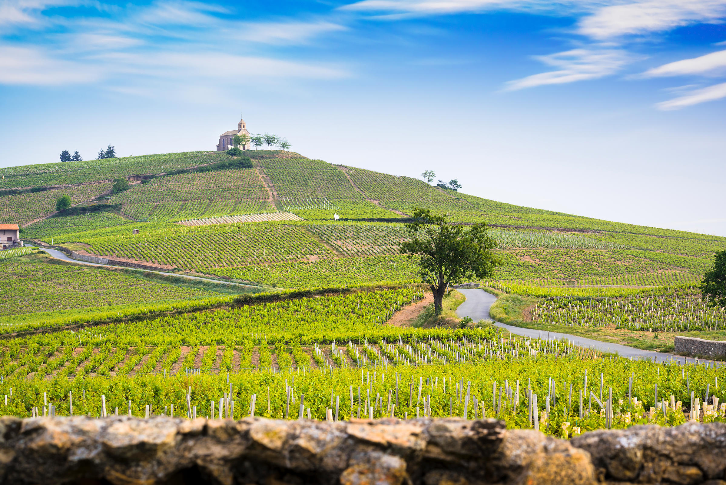 Church_of_Fleurie_village_and_vineyards_of_Beaujolais-5