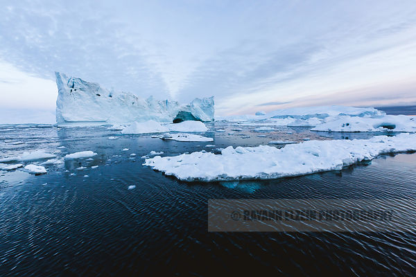 Icebergs in soft light in the Ilulissat Icefjord in Greenland
