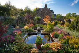 Autumn colour by mirror pool in walled garden, including Hostas, Cotinus, Pelargoniums in pot, Rudbeckia, Cercidiphyllum japo...