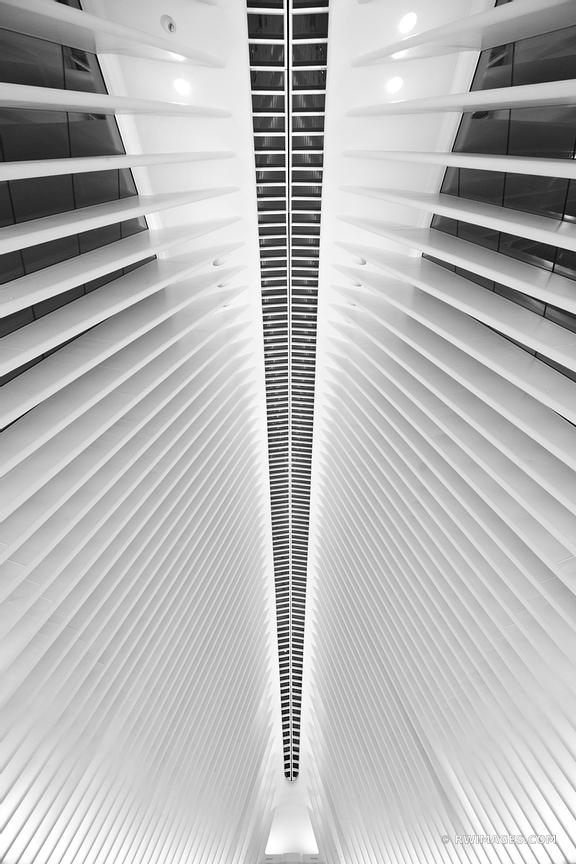 OCULUS MODERN ARCHITECTURE WORLD TRADE CENTER MANHATTAN NEW YORK CITY NEW YORK BLACK AND WHITE VERTICAL