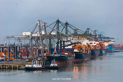 Container ships docked at Barbours Cut Container Terminal