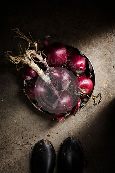 Basket of red onions on grey background. country scene