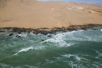 Aerial view of Cape / South African fur seal colony (Arctocephalus pusillus pusillus) on the Skeleton Coast, Namibia