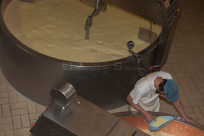 Production of Beaufort cheese, Bourg-Saint-Maurice, Savoie, Rhone-Alpes, France, May 2014.