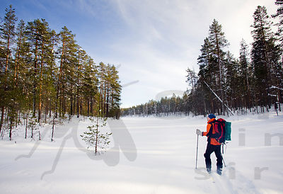 Skier on Shore of Frozen Lake