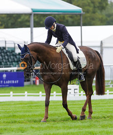 Allison Springer and ARTHUR - dressage phase,  Land Rover Burghley Horse Trials, 4th September 2014.