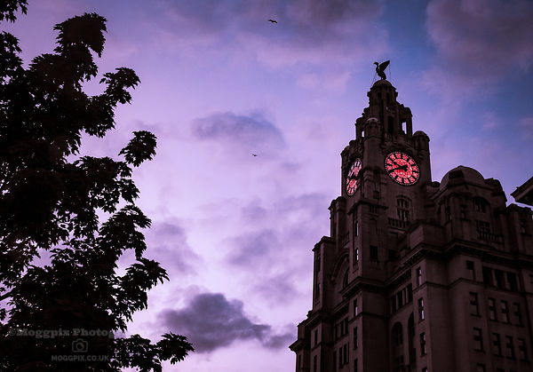 Moody Times at the Liver Building