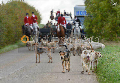 The Cottesmore Hunt at Somerby 5/11