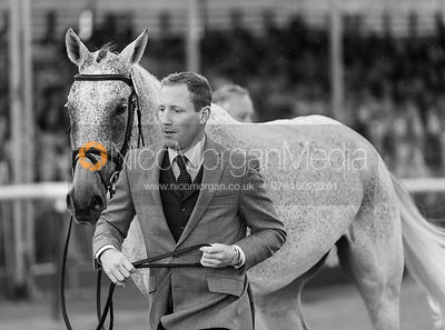 Oliver Townend and BALLAGHMOR CLASS at the trot up, Land Rover Burghley Horse Trials 2018